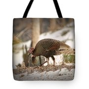 Gould's Wild Turkey Vix Tote Bag