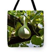 Gourd Handing On Tote Bag