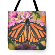 Grace And Beauty Tote Bag