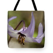 Graceful Fawn Lily Tote Bag