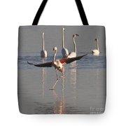 Graceful Flamingo Dance Tote Bag