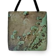 Grand Bahama Reef V Tote Bag