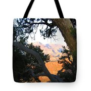 Grand Canyon 74 Tote Bag