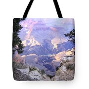 Grand Canyon 75 Tote Bag