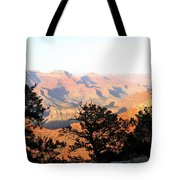 Grand Canyon 79 Tote Bag