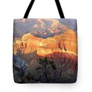 Grand Canyon 83 Tote Bag