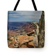 Grand Canyon And Dead Tree 1 Tote Bag