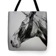 Grand Canyon Mule Tote Bag