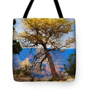 Grand Canyon National Park And Tree Tote Bag