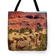 Grand Canyon National Park South Rim Tote Bag