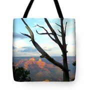 Grand Canyon Tree Tote Bag