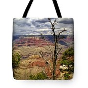 Grand Canyon View From The South Rim Tote Bag
