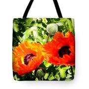 Grand Poppies  Tote Bag