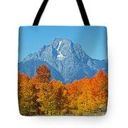 Grand Teton National Park 2 Tote Bag
