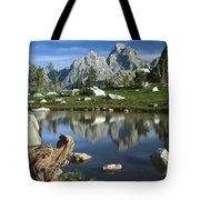 1m9374-grand Teton Reflect Tote Bag