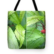 Granddaddy Spider In 3d Stereo Tote Bag