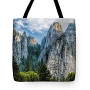 Sentinels Tote Bag