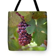 Grape Bunch Tote Bag