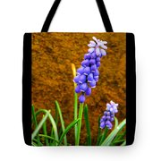 Grape Hyacinth And Sandstone  Tote Bag