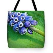 Grape Hyacinth Spike  Tote Bag