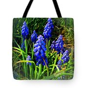 Grape Hyacinths 2014 Tote Bag