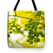 Grapes On The Vine - Finger Lakes Vineyard Tote Bag