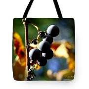 Grapes On The Vine In Square  Tote Bag by Neal Eslinger