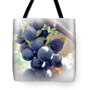 Grapes On The Vine Tote Bag by Kathleen Struckle