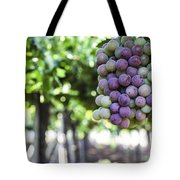 Grapes On Vine 2 Tote Bag