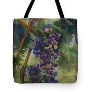 Baby Cabernets II   Triptych Tote Bag