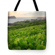 Grapevines And Islet Tote Bag by Gaspar Avila