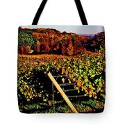 Grapevines In Vineyard, Traverse City Tote Bag