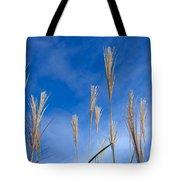 Grass Against A Blue Sky Tote Bag