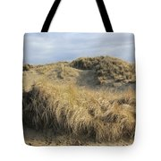 Grass And Sand Dunes Tote Bag