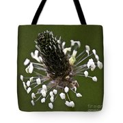 Grass Bloom Tote Bag