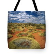 Grass Covering Sand Dunes Tote Bag