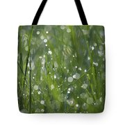 Grass Fairies... Tote Bag