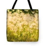 Grass Feathers Tote Bag