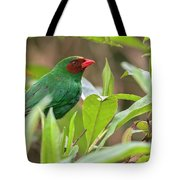 Grass-green Tanager Tote Bag