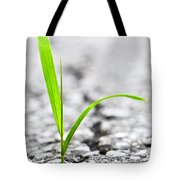 Grass In Asphalt Tote Bag by Elena Elisseeva