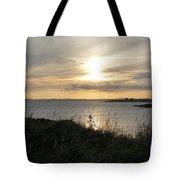 Grass In The Setting Sun Tote Bag