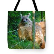Grass Is Always Greener - Llama Tote Bag by Jordan Blackstone