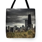 Grasses Along The Skyline Tote Bag