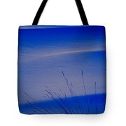 Grasses And Twilight Snow Drifts Tote Bag