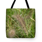 Grasses At Spaulding Pond Tote Bag