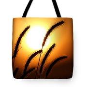 Grasses At Sunset - 2 Tote Bag