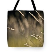 Grasses Blowing Tote Bag