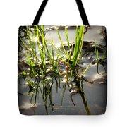 Grasses In Water Tote Bag
