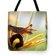 Grasshopper Antena Up Tote Bag