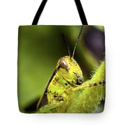 Grasshopper Macro 9402 Tote Bag